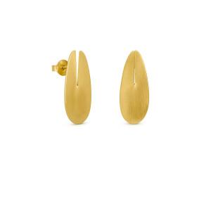 Brincos dourados Euphorbia